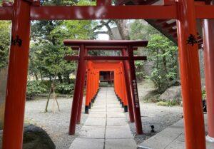 熱海前撮り 熱海フォトウェディング 来宮神社前撮り